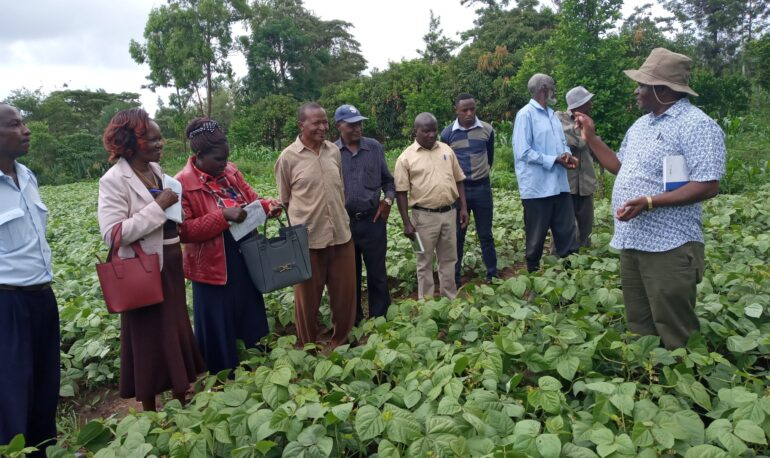 Farmers being trained on fertilizer use, water management and good agronomic management.