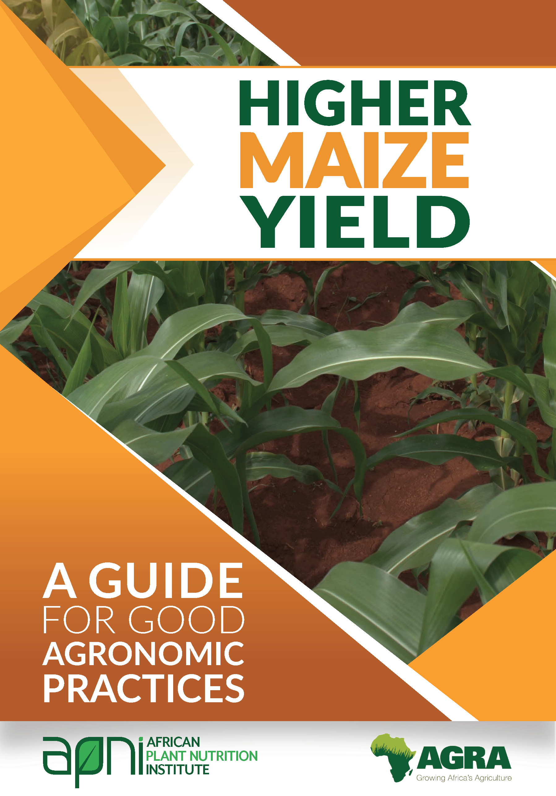 Higher Maize Yields: A guide for good agronomic practices Image