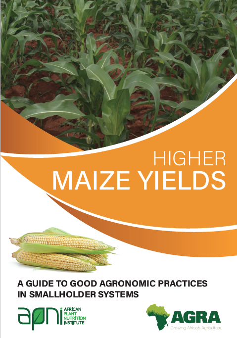 Higher Maize Yields: A guide for good agronomic practices in smallholder systems Image
