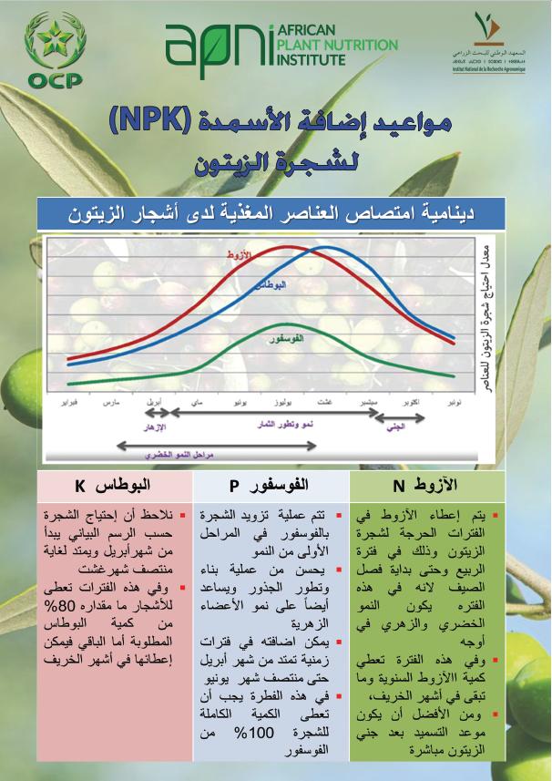 NPK fertilization timing in olive Image