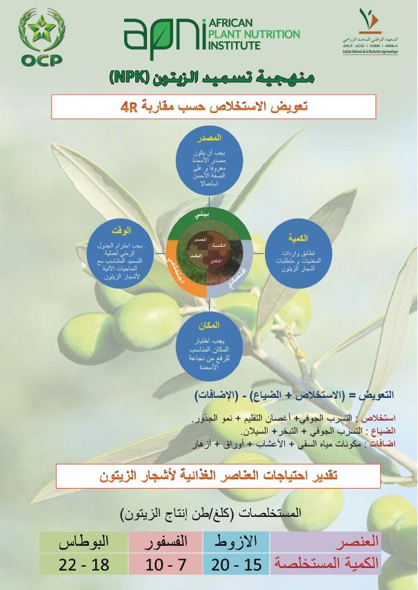 4R nutrient management of olive Image
